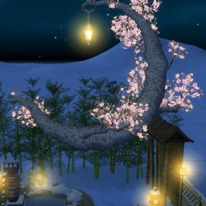 【マビ】フジの垂れ下がった家と桜のベンチ。