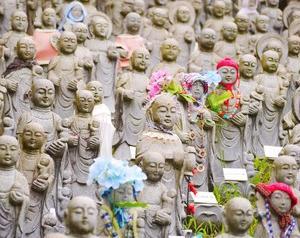 【奇習邪宗】日本の土着・民間信仰を知る本10冊(前編)【民俗神】