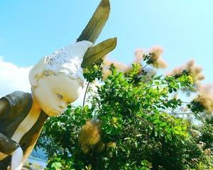 【民話伝承】日本の土着・民間信仰を知る本10冊(中編)【フォークロア】