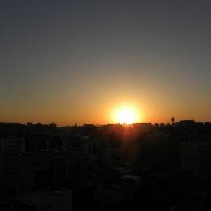 数日前の晴れた日の写真(夕焼けや野鳥)