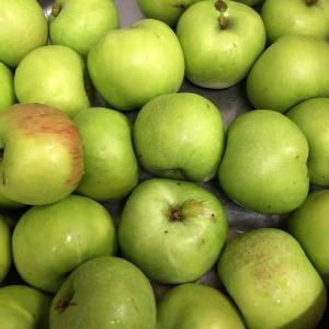 酸っぱいりんご。。。
