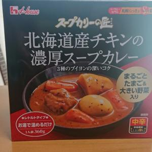 レトルトのスープカレー初めて食べた