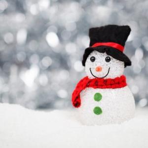 【お知らせ】LIB Laboratoryの冬期休暇について