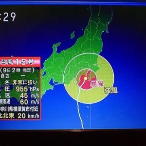 台風15号被害状況☆葉山農園(9月上旬)