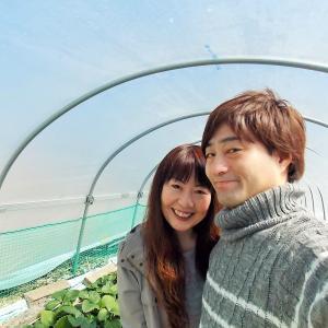 【夫婦でくるま旅】静岡県久能山いちご狩り&三保松原観光 天晴れ富士山