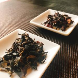 沖縄やんばるの紅茶