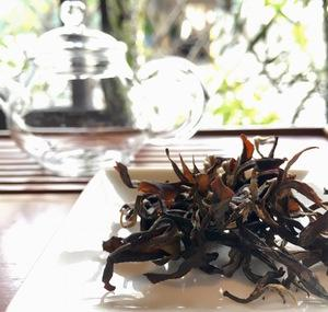 やんばる奥の紅茶再入荷のお知らせ