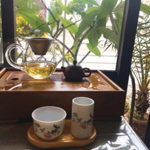 台湾冬摘み烏龍茶  入荷しました