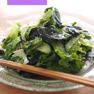 ●【レシピあり】残った海苔とレタスでチョレギサラダ