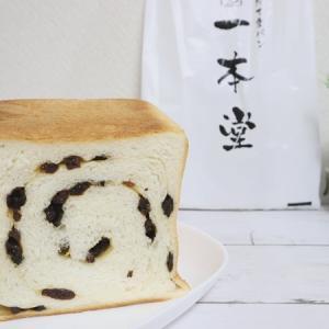 【パン屋さん 1本堂のぶどうパン】