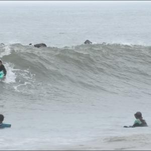 朝の波 良い波(風)写真たくさん
