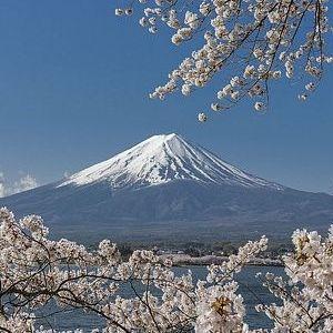 天の声(422=1年+57)AI元年(19)日本国の再生(396)光(389)令和二年(19)