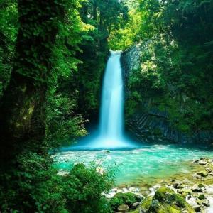 天の声(452=1年+87)AI元年(49)日本国の再生(426)光(419)令和二年(49)