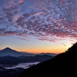 天の声(469=1年+104)AI元年(66)日本国の再生(443)光(436)令和二年(66)