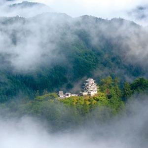 天の声(471=1年+106)AI元年(68)日本国の再生(445)光(438)令和二年(68)