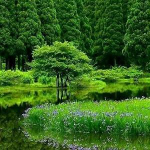 天の声(473=1年+108)AI元年(70)日本国の再生(447)光(440)令和二年(70)