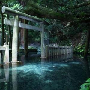 天の声(395=1年+32) 日本国の再生(370) 光(363) 現役寿命(130)