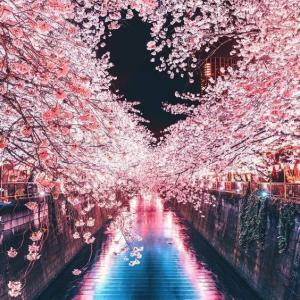 天の声(397=1年+34) 日本国の再生(372) 現役寿命(132)