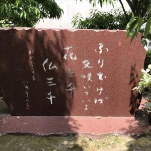 天の声(402=1年+37) 日本国の再生(376) 光(369) 令和元年(4)