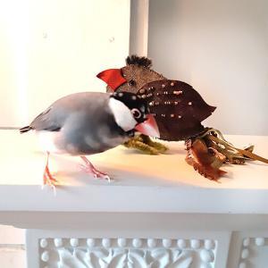 ビーズ装飾の小鳥さん