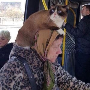 公共の乗り物で見かけた奇妙な人々