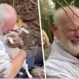 散歩中、うっかりキツネの巣穴に落ちてしまった犬が3日ぶりに発見され涙の再会(イギリス)