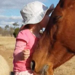 馬たちに少女が一曲歌ったところ、そこにはとってもやさしい世界が広がっていた