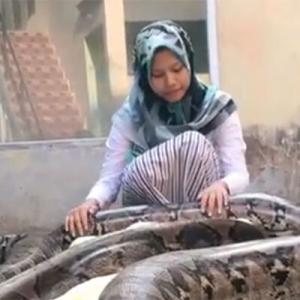 14歳少女の最愛のペットは6匹の巨大ヘビ(インドネシア ※ヘビ出演中)