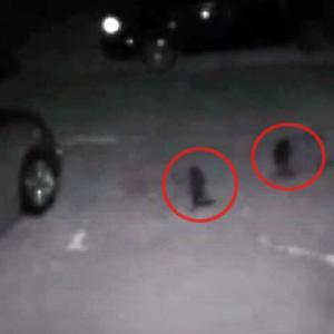 精霊さんかな?民家の玄関先で2体の小型ヒトガタ物体が監視カメラにとらえられる(アメリカ)