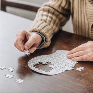 脳の老化に伴う認知機能低下を回復できる可能性。免疫系細胞の炎症を止める方法を発見(米研究)