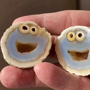 卵型の鉱物を割ったら中からクッキーモンスター!世界一かわいいなメノウが発見される
