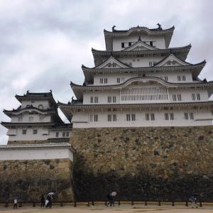 落ち着かない…姫路城見学