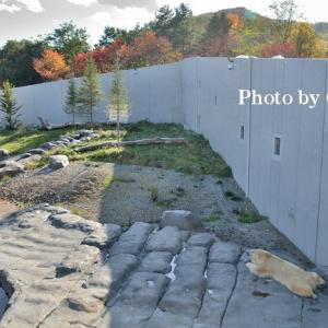 10月20日 秋晴れの円山動物園