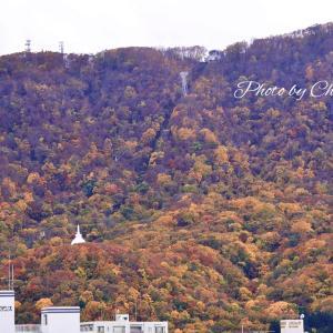 札幌市藻岩山の紅葉