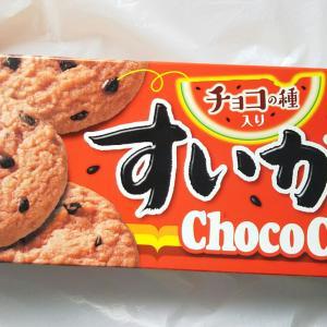 【期間限定】ミスターイトウ すいかチョコチップクッキー2020