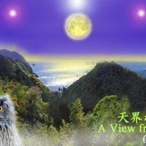 スピリチュアルアート Spiritual Art フクロウ 天界の絵 2 ヒーリングアート