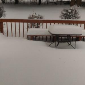 ミシガンも大雪です~