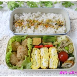 ☆鶏つみれのお弁当☆