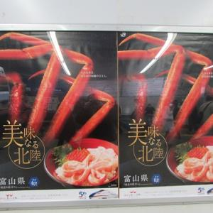 日暮里駅で、富山県全開?のポスター。 【2019年11月 東京都荒川区】