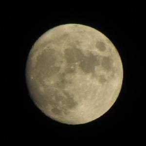 2021年秋、晴天の夜空に浮かぶ東京の月。 【2021年09月 東京都練馬区】