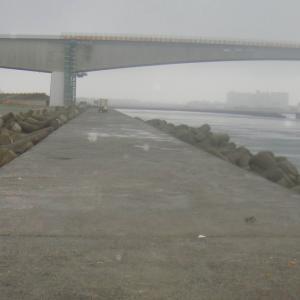 浜名湖新居堤 梅雨入り、釣果も梅雨