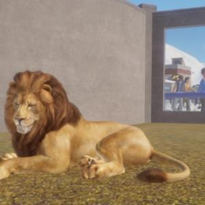 【Planet Zoo】ライオン導入
