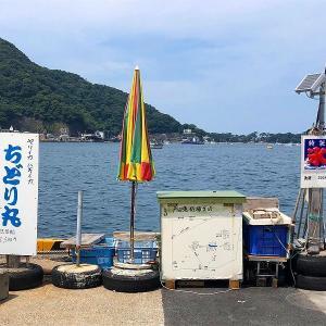 西伊豆・戸田漁港「係留船ちどり丸」で船酔い知らずの釣りを楽しもう!