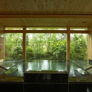 庭園のような温泉が魅力!「伊豆長岡温泉 京急ホテル」