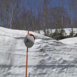 月山夏スキー場に行ってきました!