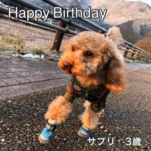 ◯サプリの誕生日◯