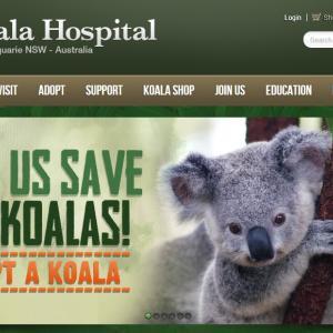 オーストラリアに寄付を!コアラ達を想いながら環境問題を考える。