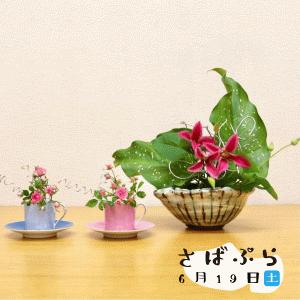 「食器でいけ花ワークショップ」さばぷら(6月19日)コト紹介。