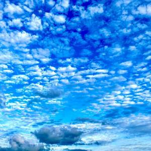 夕方の秋空。うろこ雲。