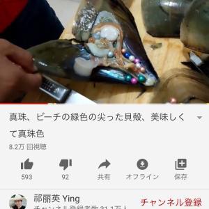 you tubeで見る淡水真珠ざくざく動画☆